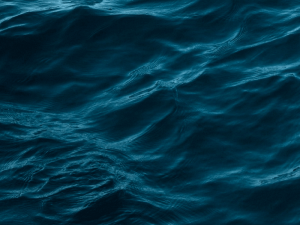 море инфографики
